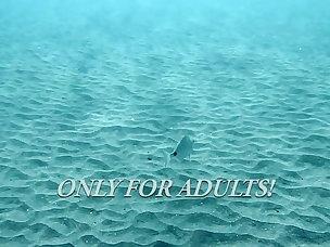Underwater Porn Tubes